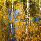 Colors and Reflections by Ari Salmela