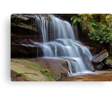 Flowing Free. Canvas Print