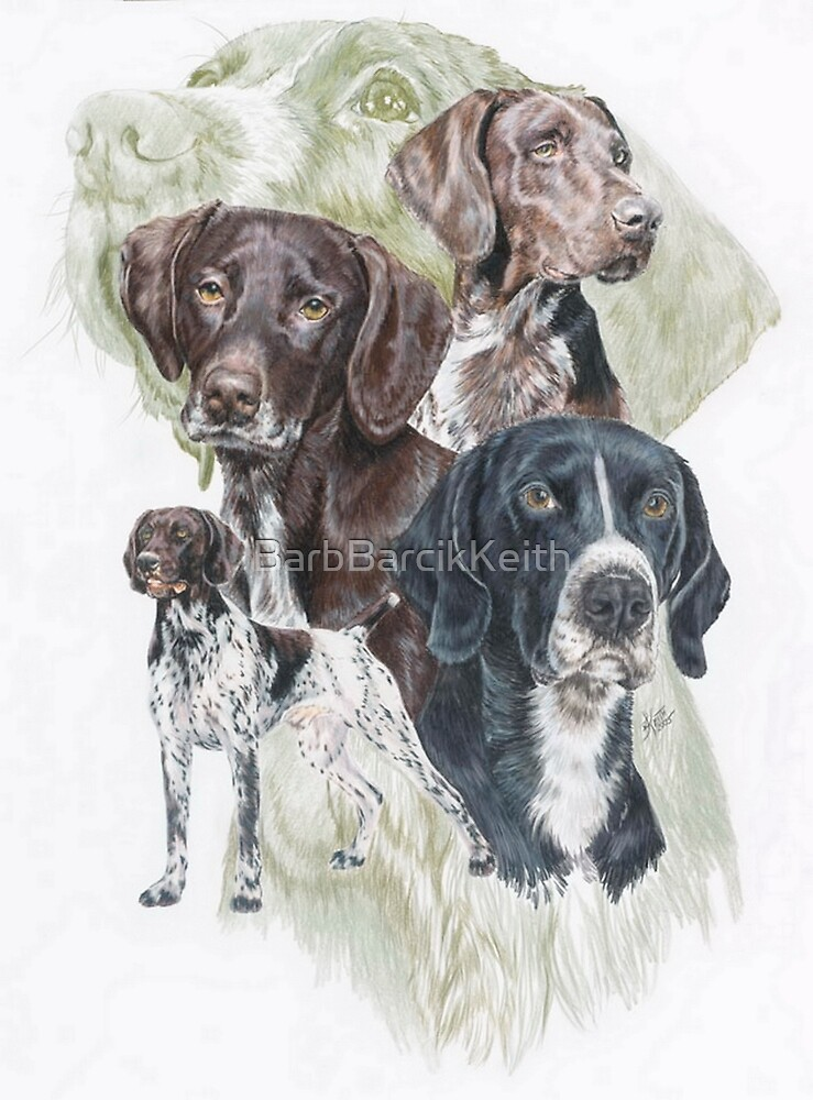 German Short-Haired Pointer /Ghost by BarbBarcikKeith
