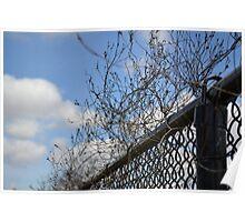 Vine Fence Poster