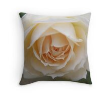 Rose...pure and simple  Throw Pillow