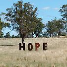 Hope by DEB CAMERON