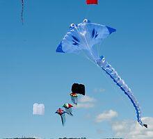 0898 Mt Martha Kite Festival  by DavidsArt
