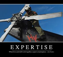 Expertise: Inspirational Quote and Motivational Poster by StocktrekImages