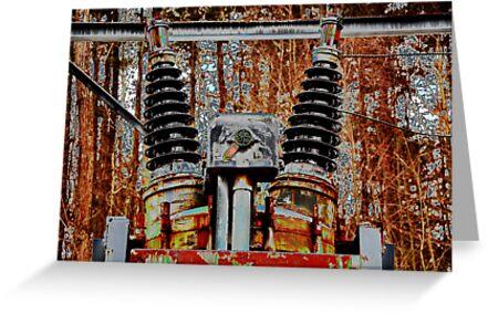 Transformers...Robots in Disguise  by John  Kapusta