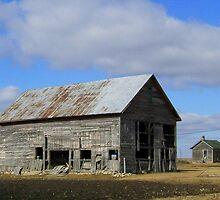 Brooklyn Barn by Ogre