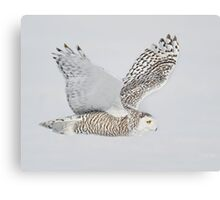 Close Fly By Canvas Print
