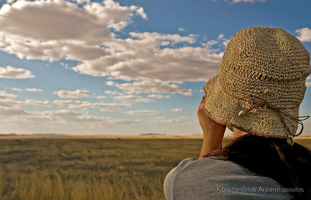 Scanning the plains of Serengeti by Konstantinos Arvanitopoulos