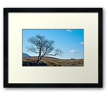 Nature waits patiently for the end of winter Framed Print
