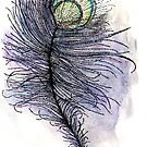 Peacock Feather by samclaire