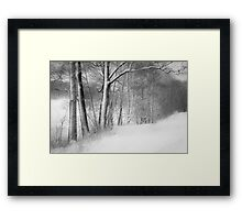gateway to the winter forest Framed Print