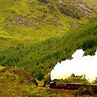 Steam Train on the Fort William to Mallaig railway by bryanrqueen