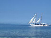 Plain Sailing by bhavini