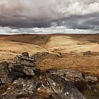 Beardown Tors, Dartmoor, Devon, UK by daynov
