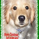 Golden Retriever Christmas Card ~ Have You Seen Santa? by Marie Sharp