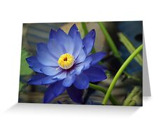 Blue Lotus Greeting Card