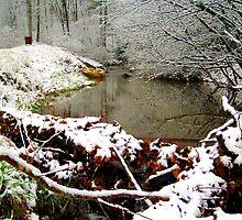 winter creek  by LoreLeft27