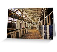 Connorville Woolshed Greeting Card