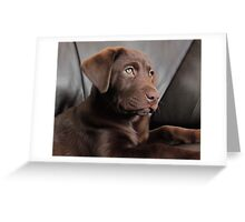 Enzo Greeting Card