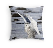 Evidence of Heaven  Throw Pillow