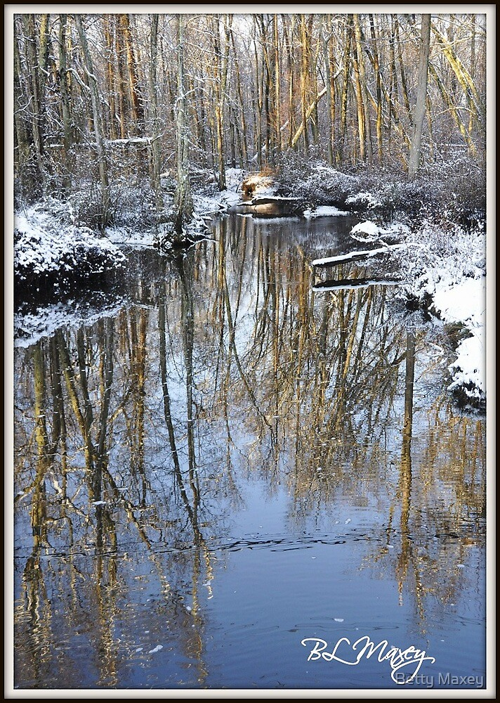 White Oak Swamp...... AGAIN by Betty Maxey