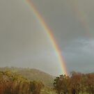 Rainbow Days by JudyDarcy