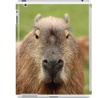 Portrait of a rather handsome capybara iPad Case/Skin