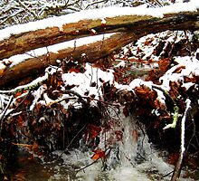 little winter waterfall by LoreLeft27