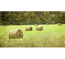 Hay bales in the field Photographic Print