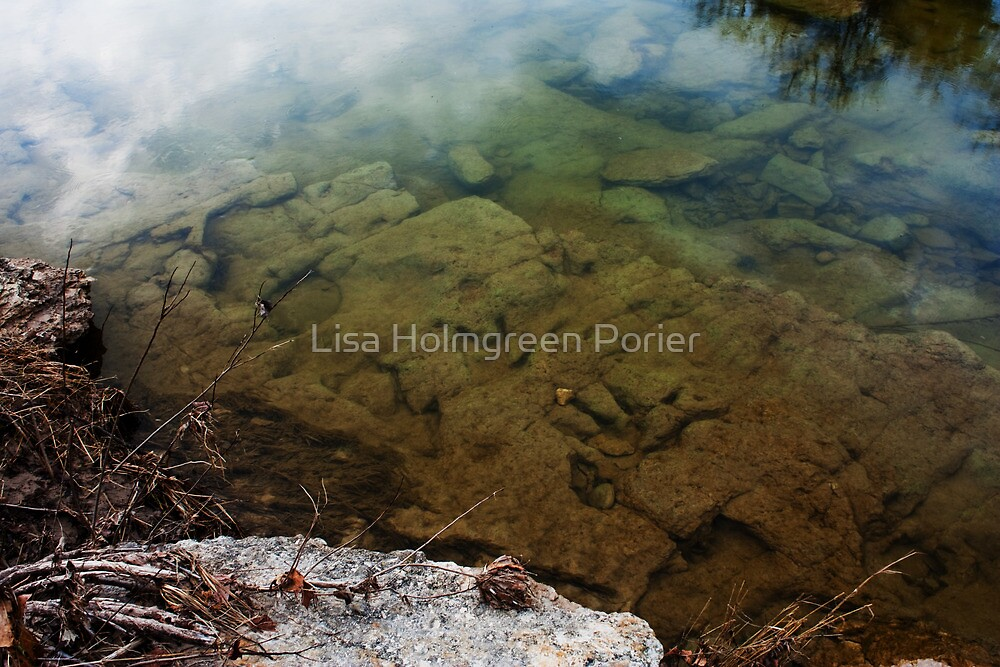 Dinosaur Tracks in the Paluxy River by Lisa Holmgreen