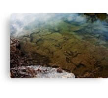 Dinosaur Tracks in the Paluxy River Canvas Print