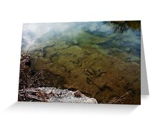 Dinosaur Tracks in the Paluxy River Greeting Card