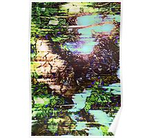Abstract Vision in Nature Poster