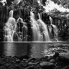 Rochester Falls by Irina Chuckowree