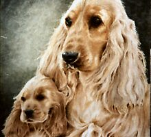 Spaniel Mother and Pup  by carys123
