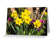 Sunny Daffodil Bouquet – Impressions Of Spring Greeting Card