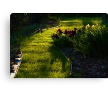 Green Garden Path - Impressions Of Spring Canvas Print