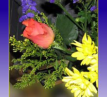 Rose and Chrysanthemums Birthday Card by BlueMoonRose