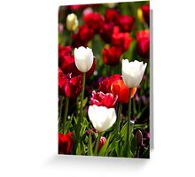 Floral Wines Greeting Card