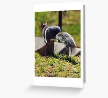 Leaping Squirrel Greeting Card