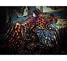 Wild Ride Photographic Print