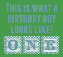 What A Birthday Boy Looks Like Kids Tee