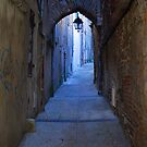 Cahors Alley by triciamary