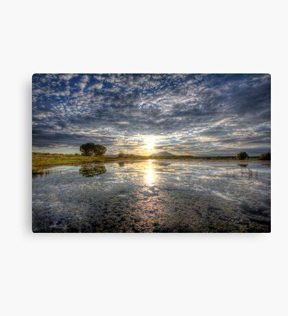 Sun Sneak Canvas Print