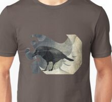 From the Raven Child Unisex T-Shirt