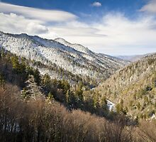 Great Smoky Mountains National Park Winter Snow Gatlinburg TN by Dave Allen