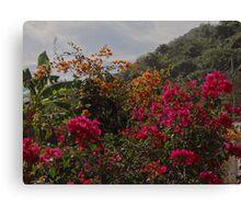 Nature Along The River Cuale - Naturaleza Al Lade Del Rio Cuale Canvas Print