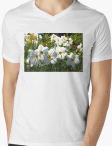 Poet Daffodils Dreams - Impressions Of Spring Mens V-Neck T-Shirt