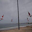 Flyers VI - Voladores by Bernhard Matejka