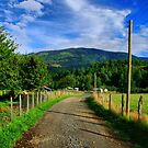 Country Road at Caburgua Chile by Daidalos